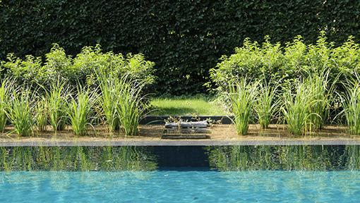 Hedendaags ecozwembad – Bazel
