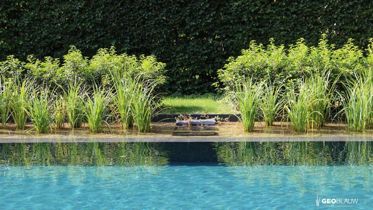ecozwembad-te-bazel