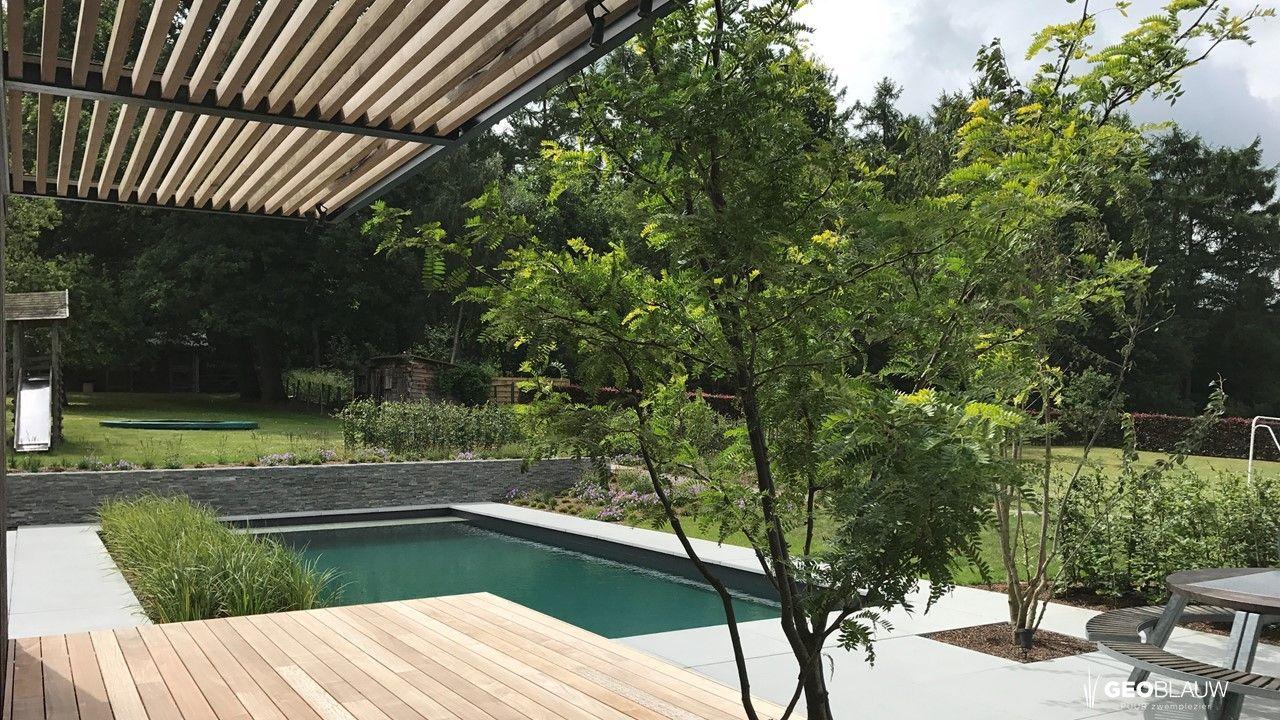 door-planten-gefilterd-zwembad-haasrode