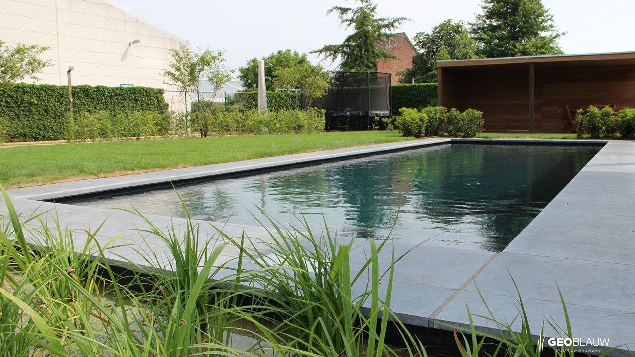 zwembad-natuurlijke-zuivering