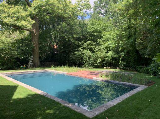 Renovatie van chloorzwembad naar natuurlijk ecozwembad = Puur zwemplezier !